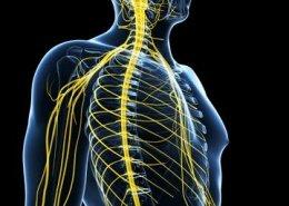 Neuromodulacion