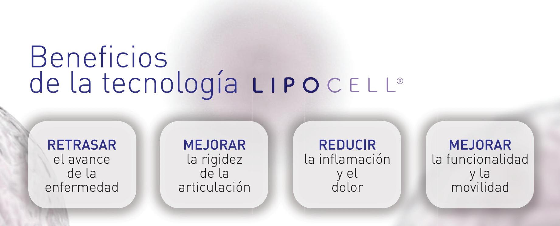 células madre mesenquimales
